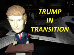 TRUMP IN TRANSITION