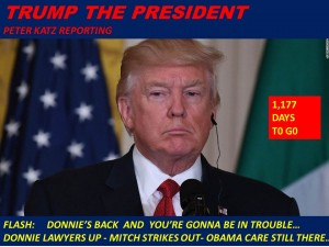 9-TRUMP THE PRESIDENT
