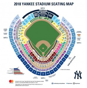yankees-netting